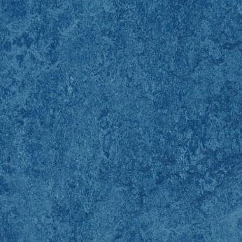 blue 303035